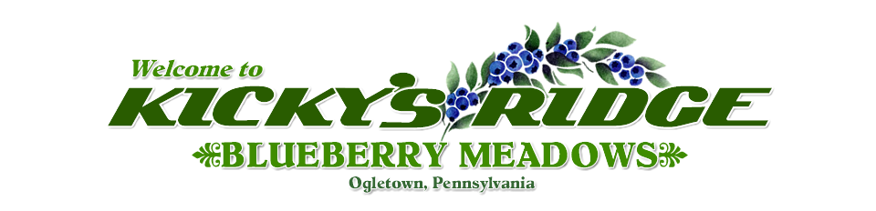 Blueberry Meadows Mountain Chalet Ogletown PA